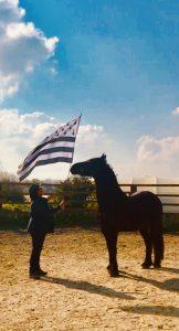 Breizh cheval